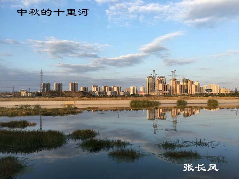 2017年重阳节摄影比赛